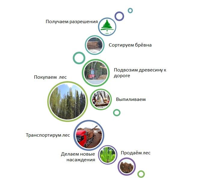 Baltic_Timber_vidi_dejatelnosti_ru